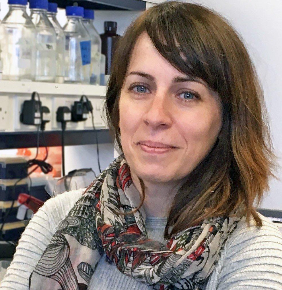 Cancer cell communications - Q&A with Dr Susana Godinho
