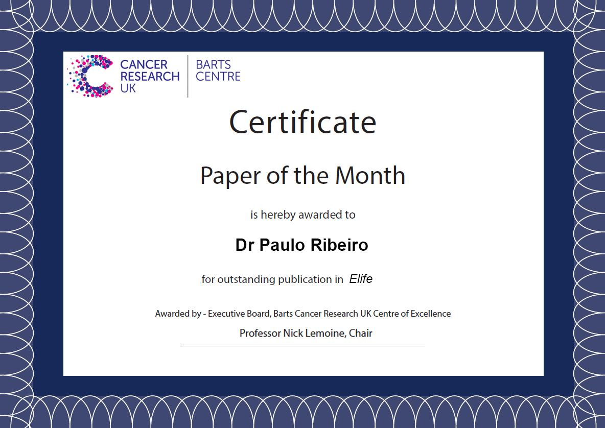 Paper of the Month Certificate Paulo
