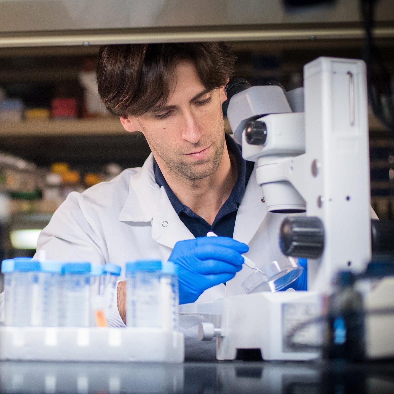 00195325-012, 09-14-17, research procedures, location portraits, individuals, researchers, laboratory, microscope, white lab coat, man, male, Miguel Ganuza Fernandez PhD (Hematology),